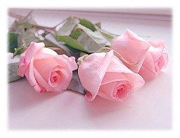 Букеты роз красивые фото #4