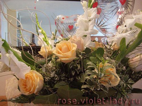 Гладиолус – галантный кавалер для розы