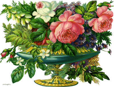 Как приготовить розовое масло в домашних условиях