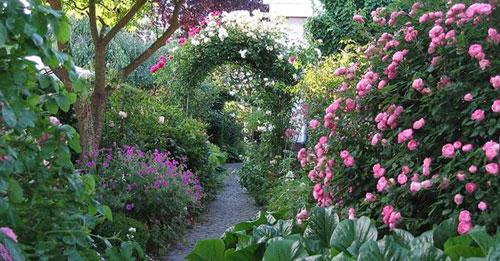 Идеальный сад – несколько законов садовода
