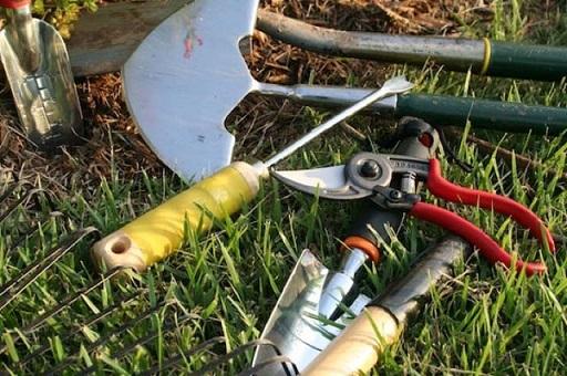 Как правильно ухаживать за инструментами